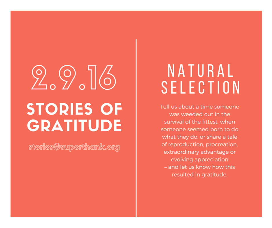 stories of gratitude -- natural selection